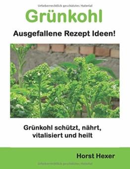 Grünkohl - Ausgefallene Rezept Ideen: Grünkohl schützt, nährt, vitalisiert und heilt - 1